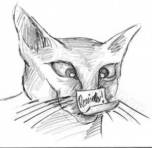 Cat_Reminider