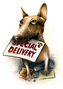 Dog_SpecialDelivery