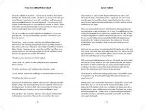 MulberryBush v3 interior readerspreads 4