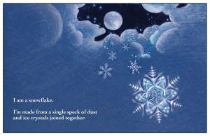 Snowflake 8.5x11 interior FIN 7-29-12 5